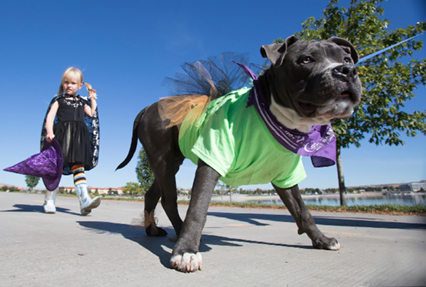 John Byrne/Tribune -  A little girl in a witch costume strolls behind her dressed-up pup at the Bark for Life American Cancer Society walk at the Sparks Marina on Sunday.